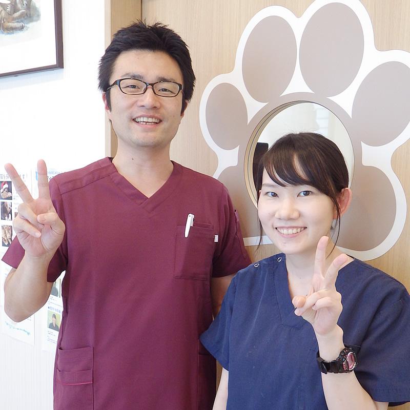 獣医師 柳沢